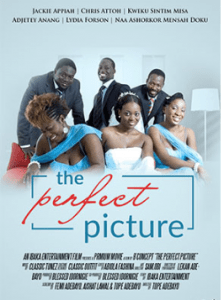 The Perfect Picture – Nollywood
